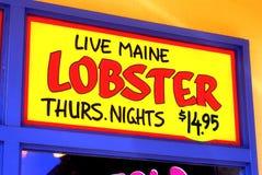 Langosta viva de Maine Imagenes de archivo
