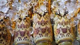 Langostas frescas en el hielo Comida de la calle en primer de las langostas espinosas de Asia almacen de video