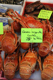 Langouste. Spiny lobster at the fish merchant in Normandy Royalty Free Stock Image