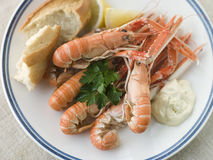 Langouste with Garlic Mayonnaise Lemon. And Crusty baguette Royalty Free Stock Photo
