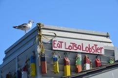 Langoustine ! ! Photo stock