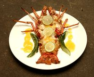 Langoustine Photo stock