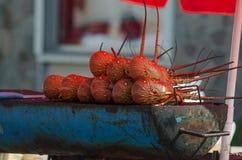 Langoustine grillée Photos libres de droits