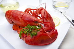 Langoustine rouge d'une plaque Photo libre de droits