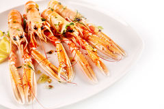 Langoustine Shellfish Served with Lemon and Herbs Stock Image