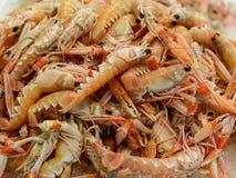 Langoustine sur le marché de fruits de mer photo libre de droits