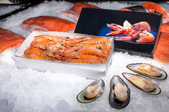 Langoustines in a box lie next to mussels Stock Photography