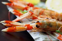 Langoustines Stock Photos