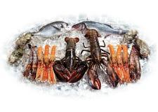 Langoustines et poissons Image libre de droits