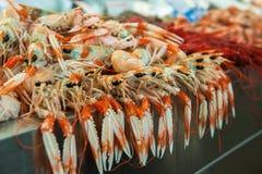 Langoustines at fish market Royalty Free Stock Images