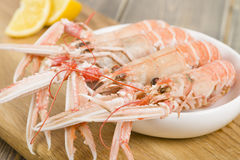 Langoustines with Lemon Wedges. Royalty Free Stock Images