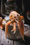 Langoustines in metal cup Royalty Free Stock Photography