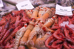 Langoustines and prawns at fish market Royalty Free Stock Photography