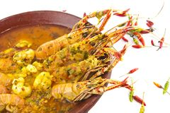 Langoustines Stew Stock Images