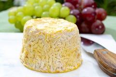 Langres, de Franse zachte kaas van de koemelk, romig en kruimelig met witte schil royalty-vrije stock foto's