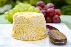 Langres, French cow milk soft cheese, creamy and crumbly with white rind. French cheeses collection royalty free stock image