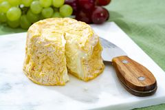 Langres, French cow milk soft cheese, creamy and crumbly with white rind. French cheeses collection royalty free stock photos