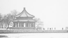 The Langruting in the Summer Palace in snowing season Stock Images