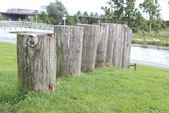 Langs DE Haarrijnse plas Stock Foto
