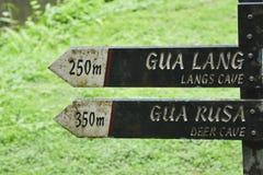 Langs & hjortgrottatecken - Borneo Royaltyfri Foto