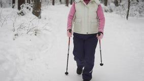 Langsame Ansicht der Frau, die an Renndem gehen in einen schneebedeckten Wald teilnimmt, den, sie in den Park den ganzen Tag ging stock video footage
