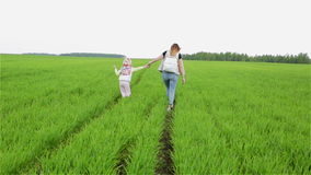 Langsame Bewegung Mutter und Tochter, die auf das grüne Feld gehen stock video