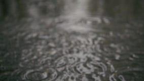 Langsame Bewegung Regentropfen in einer Pfütze auf dem Bürgersteig stock video