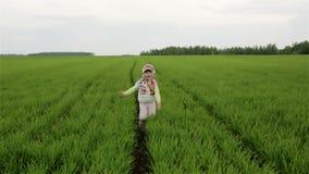 Langsame Bewegung Schönes kleines Mädchen, das auf dem grünen Feld läuft stock video footage