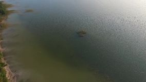 Langsame Landung über dem See stock footage