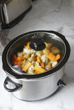 Langsamer Kocher - Hühnereintopf stockbild