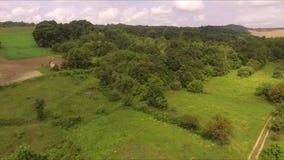Langsames Fliegen in Richtung zum Wald, ein altes verlassenes Haus im Tal stock video