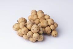 Langsat fruit. Longkong, Langsat or Lanzones fruit is endemic to Southeast Asia Royalty Free Stock Photography