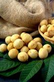 Langsat - tropical fruit Royalty Free Stock Images