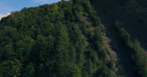 Langstreckennaturgebirgsgrünbaum-Waldlandschaft, Vogelperspektive 4K stock video footage