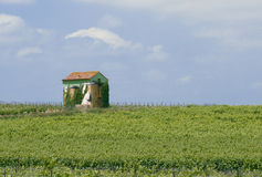 Languedoc. Lonely house in a green lawn Stock Photo