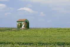 Languedoc Στοκ Εικόνες