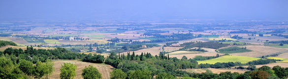 Languedoc-Landschaft stockbilder