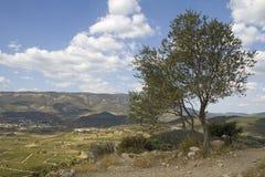 Languedoc - panorama Stock Image