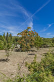 Languedoc-Roussillon province in France Stock Photography