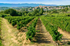 Languedoc vineyards around Beziers Herault France. Languedoc vineyards around Beziers with view on Corneilhan and Herault mountains languedoc-roussillon france Royalty Free Stock Photography