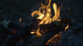 Langues de flamme brûlant la nuit clips vidéos