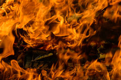 Langues de flamme sur le bois brûlant Photographie stock