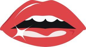 Languettes Image libre de droits