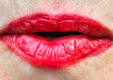 Languettes Images stock