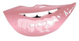 Languettes de sourire Images libres de droits