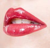 Languettes sexy Images libres de droits
