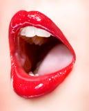 Languettes sexy de fille Photographie stock