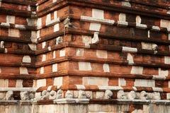 Langur de Hanuman, entellus de Semnopithecus, mono en ciudad sagrada Fotos de archivo libres de regalías