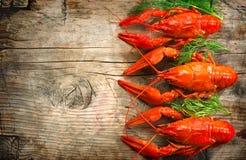 Languster Röd kokt kräfta på en trätabell Royaltyfria Foton