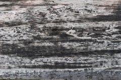 Langzaam verdwenen Oude Plank Stock Afbeeldingen